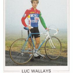 Luc Wallays, Roeselare