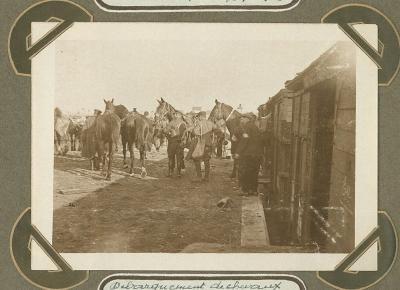 Lossen van paarden, Adinkerke 16 oktober 1915