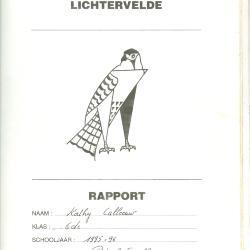 Voorbeeldrapport, Lichtervelde, 1995-1996