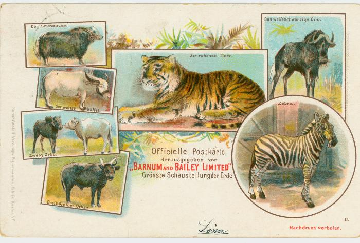 Postkaart Barnum and Bailey limited
