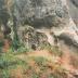 Chiro Gits, Chirojaar 1994 - 1995