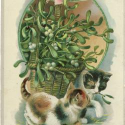Beeldzijde nieuwjaarskaart, twee poesjes rond mand met maretak