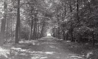 Kasteel en park Sterrebos, Rumbeke 1970