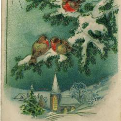 Beeldzijde nieuwjaarskaart, winters dorpszicht met roodborstjes