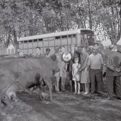 Veeprijskamp, Staden 1969