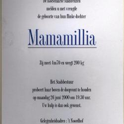 Doop van reuzin Mamallia, Roeselare, 2000
