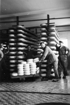 Rijpingszaal kaas, melkerij W. Hennion en N. Van Speybroeck, Moorslede, 1942
