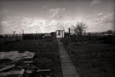 Tuin Ternier, Moorslede februari 1978