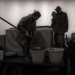 Uitzetten van vis in visvijver, Moorslede 1976