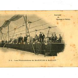 Postkaart met de 'fenomenen' van het Barnum en Bailey circus