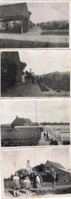 Tuinbouwbedrijf Victor Viaene voor Wereldoorlog II, Gits