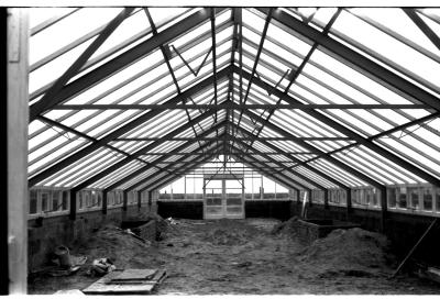 Fotoreportage serres in aanbouw Velghe, Izegem, 1959